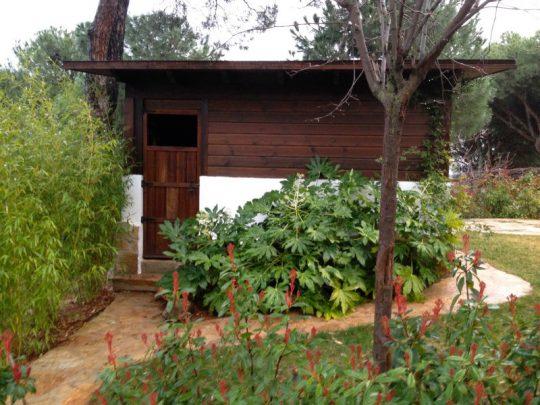 Caseta de madera 3
